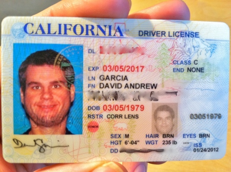 Driver Keep It My Photo Up Yes License David New