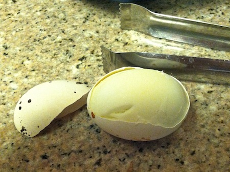 exploded-shell-hard-boiled-egg