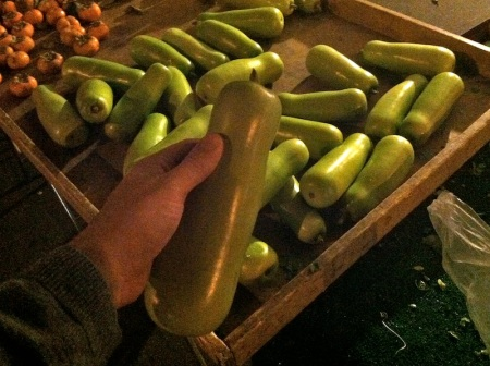 chinese-gourds-at-evening-farmers-market