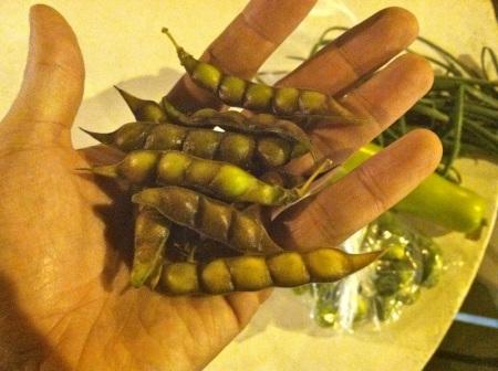 handful-of-unshelled-pigeon-peas
