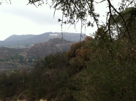 hollywood-sign-hike