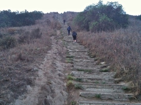 Stairs-Baldwin-Hills-Scenic-Overlook