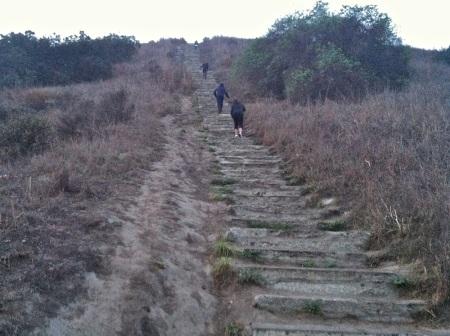 Stairs-Baldwin-Hills-Scenic-Overlook