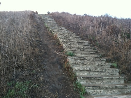 Steps-Baldwin-Hills-Scenic-Overlook