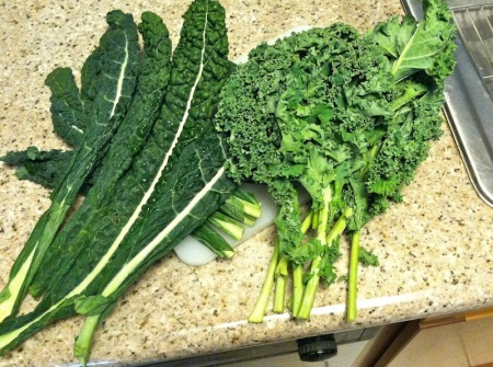 two-types-of-kale-lacinato