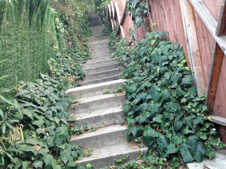 Adina-Passmore-Stairway-Upper-End