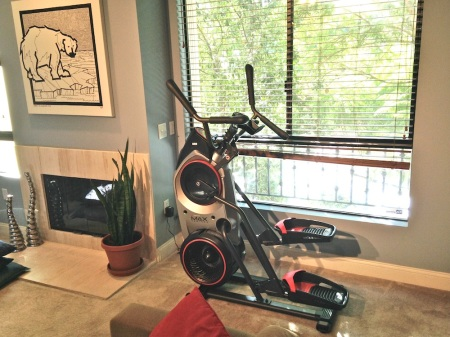 Bowflex-MAX-Trainer-living-room