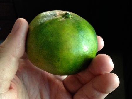 green-tangerine