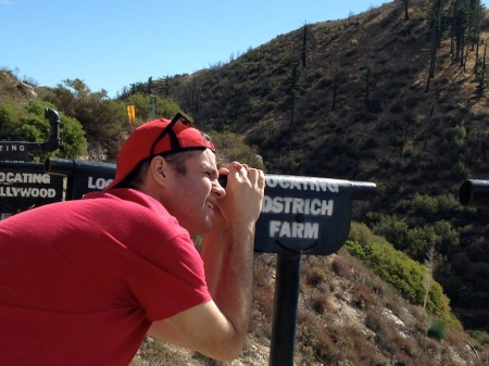 David-Ostrich-Farm-Lookout