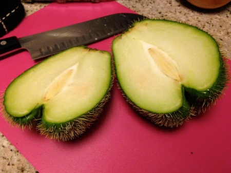 halved-thorny-chayote