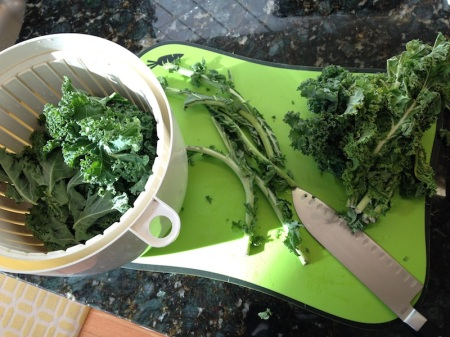 kale-ribs-salad-spinner