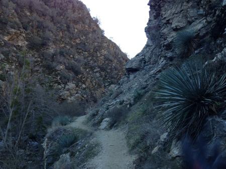narrow-trail-on-ledge-canyon