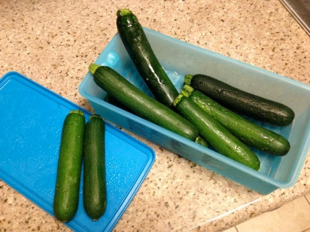 extra-fancy-zucchini-la-salad-company