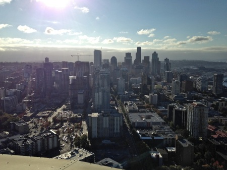 view-from-space-needle