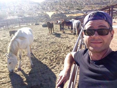 david-horses-horseshoe-trail-nevada