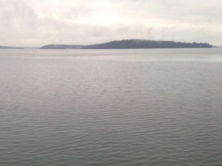 view-of-water-from-train
