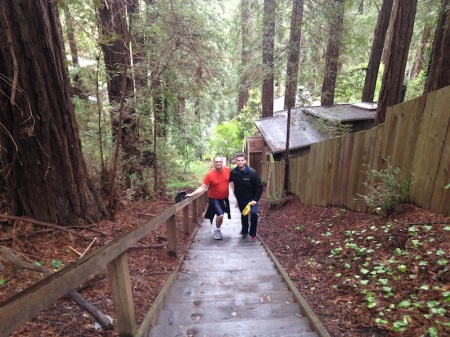david-steven-dipsea-stairs