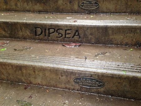 dipsea-stairs-close-up