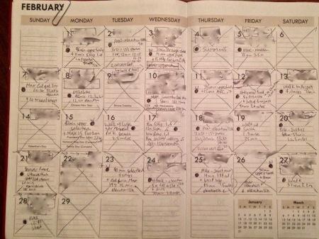 february-calendar-workout-progress-report