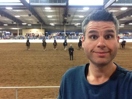 david-horse-show