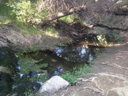 malibu-creek