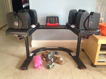 bowflex-selecttech-560-dumbbells-stand-dog-toys