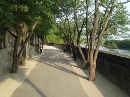 bike-path-behind-zoo