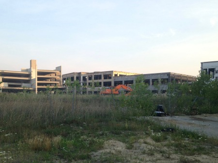 Bloomfield-Park-Ruins-1