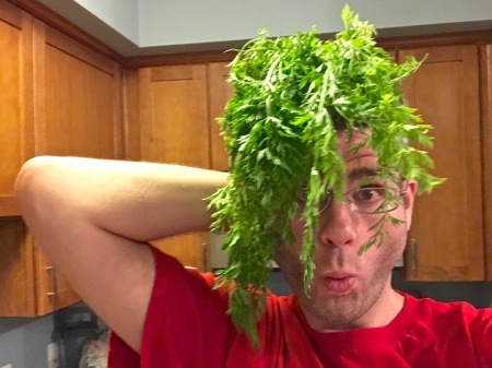 carrot-greens-wig