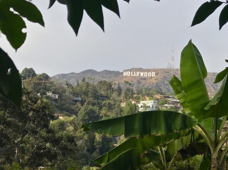 hollywood-sign-hollyridge-road