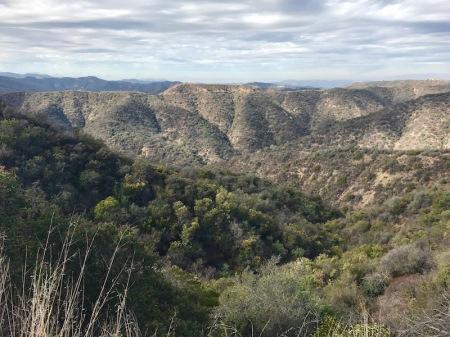 view-westridge-canyonback-wilderness-area-mandeville-fire-road