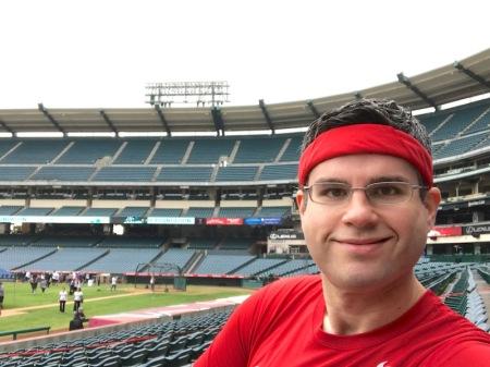 david-lower-deck-angel-stadium