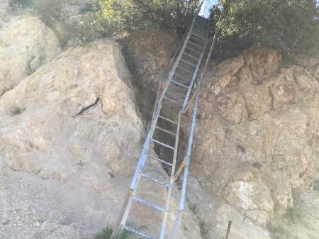griffith-park-ladder
